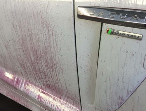 So you think your car is clean?